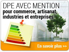 DPE industrie Toulouse 31000